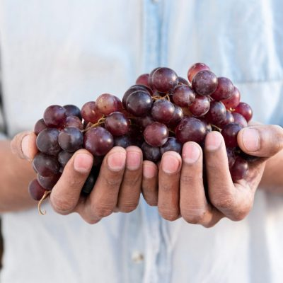 Los tipos de uva más comunes